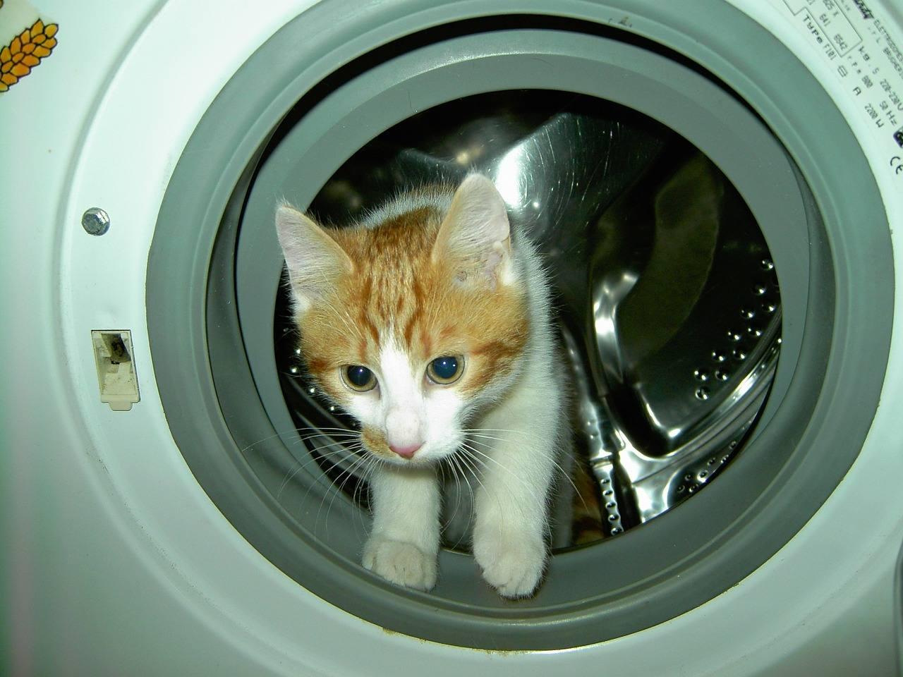 Come capire se è arrivato il momento di comprare una nuova lavatrice